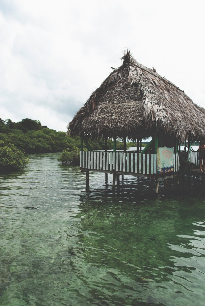 PANAMA_BOCASDELTORO_ROT