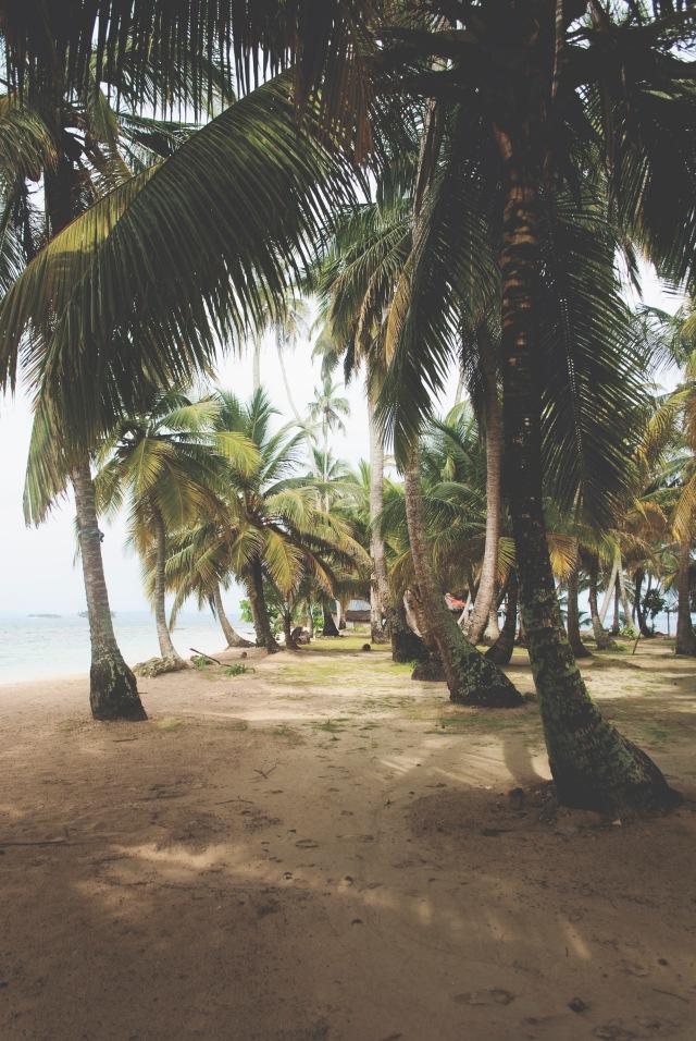 PANAMA_SANBLAS_9_ROT