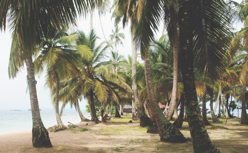 Paradise in Panama – PartII