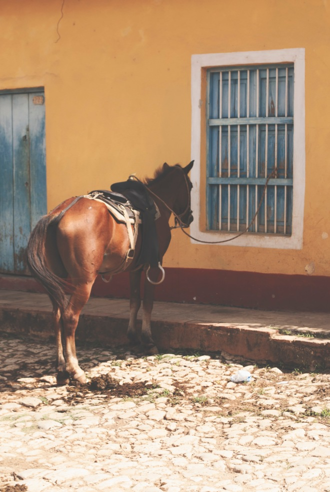 ROT_CUBA_TRINIDAD_22