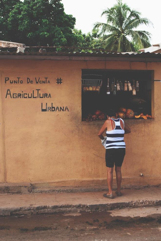 ROT_CUBA_TRINIDAD_29