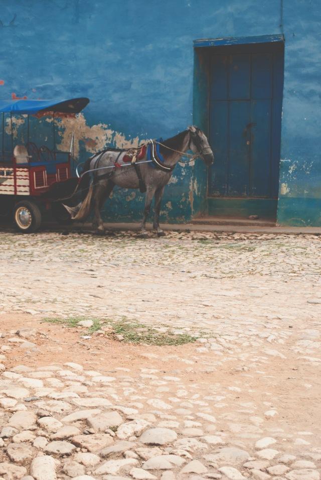 ROT_CUBA_TRINIDAD_47