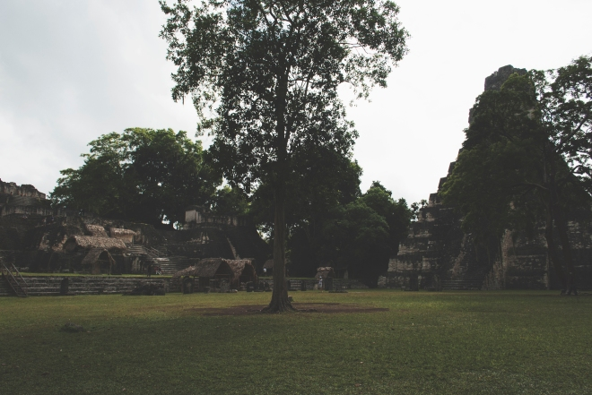 GUATEMALA_TIKAL_13