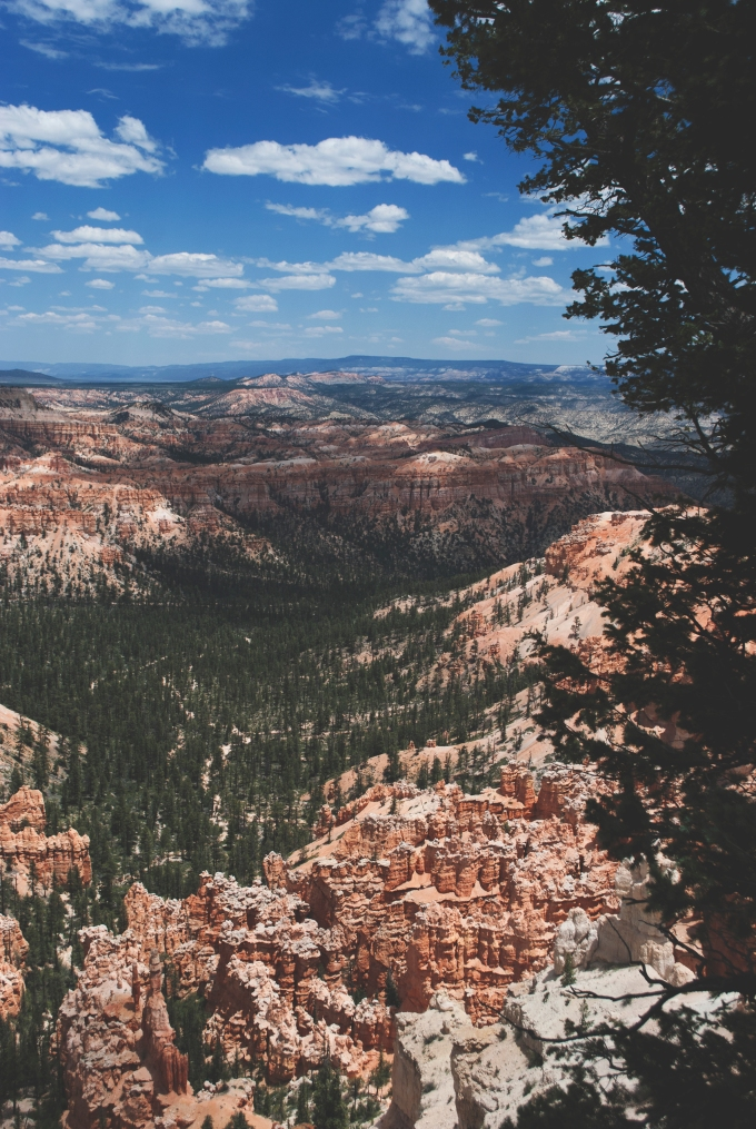 USA_BryceCanyon_18