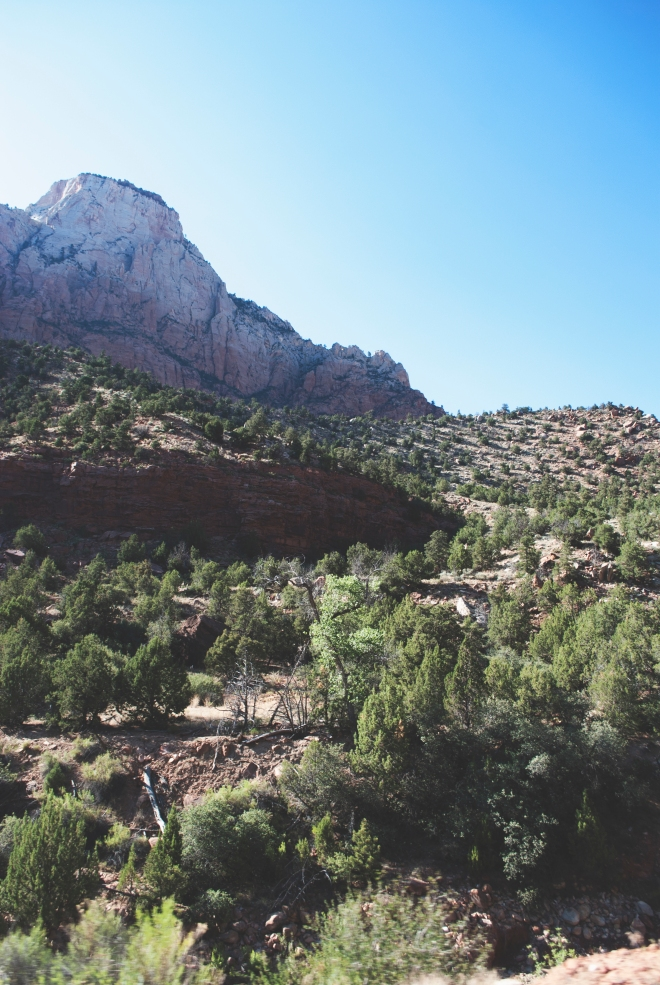 USA_ZionNationalPark_15