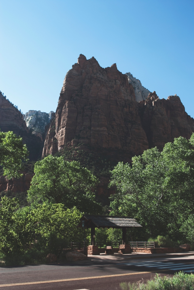 USA_ZionNationalPark_18