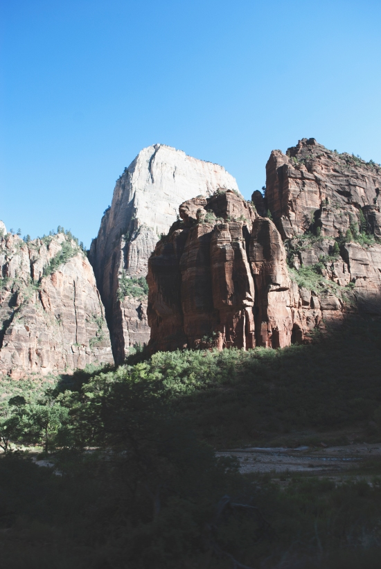 Snapshots of Zion National Park | https://roosendansontour.com/
