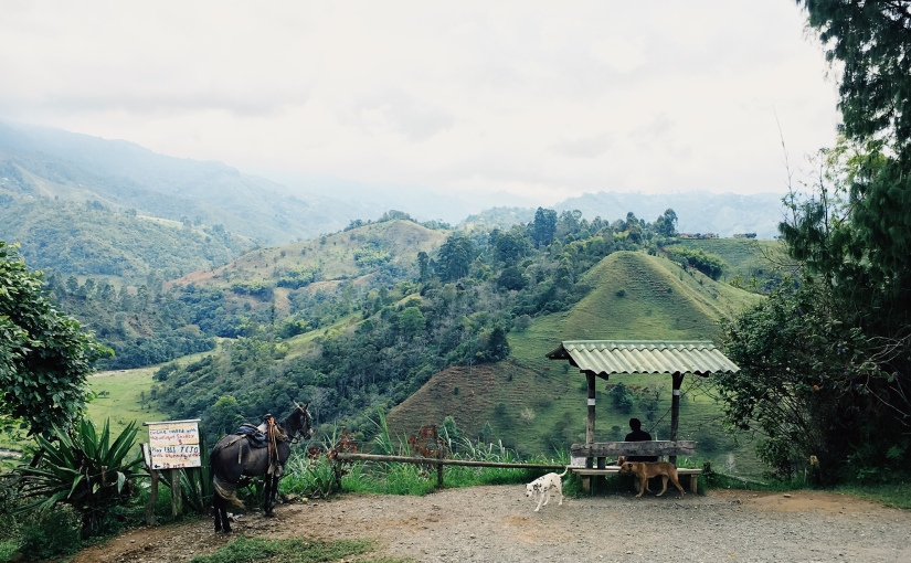 My highlights of Colombia's Eje Cafetero – Part II – Coffee tasting and Pereira's surprise